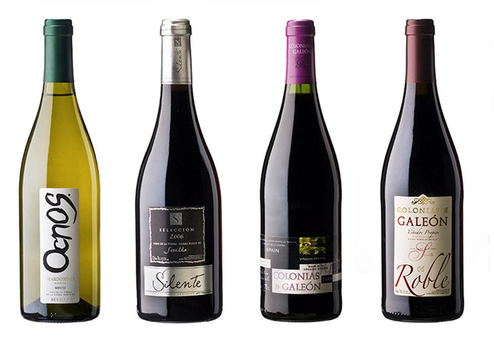 botellas-vino-galeon